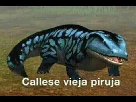 Dinosaurio Memes The best memes from instagram, facebook, vine, and twitter about dinosaurios groseros. dinosaurio memes
