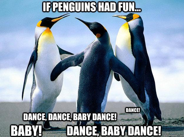 Funny Penguin Memes