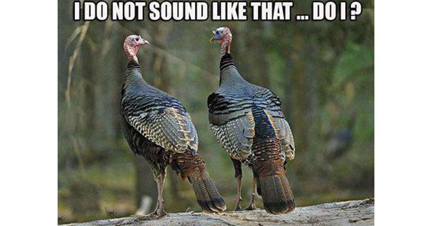 13 memes every turkey hunter wants to share