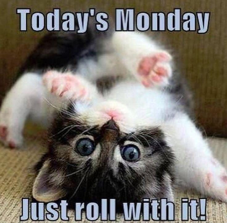 Happy Monday Memes