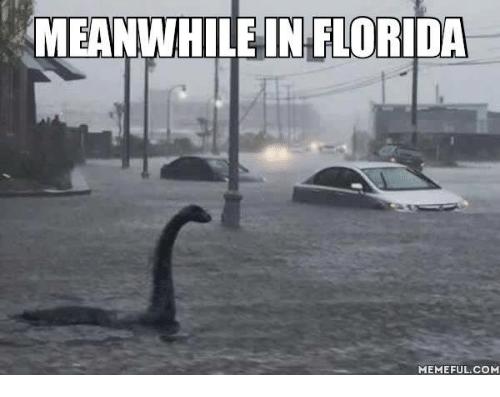 Florida Rain Memes