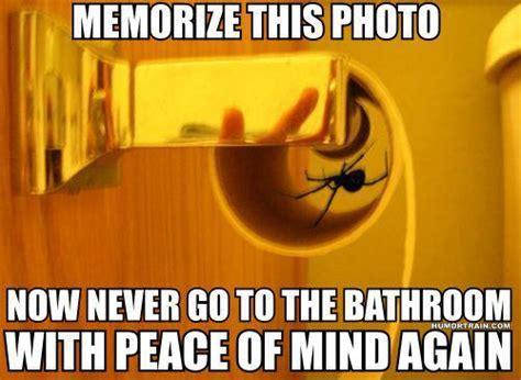 Afraid Of Spiders Memes
