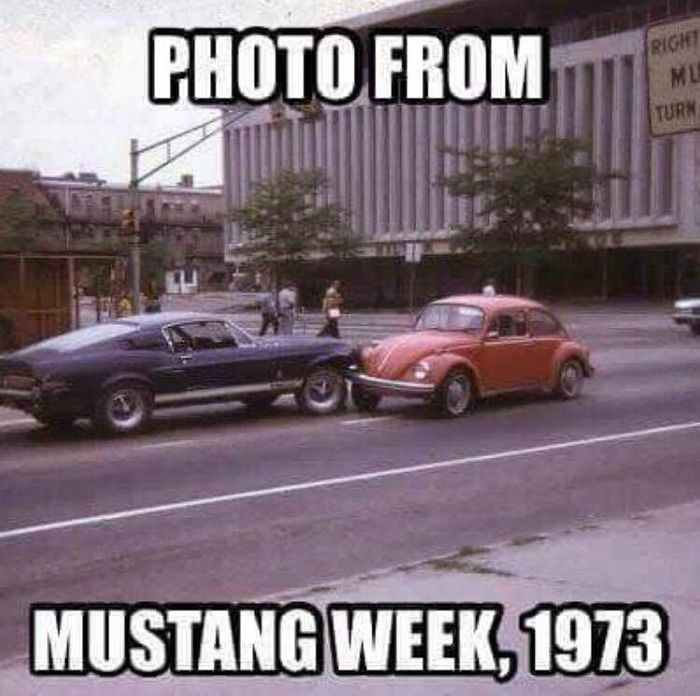 Ford Mustang Memes