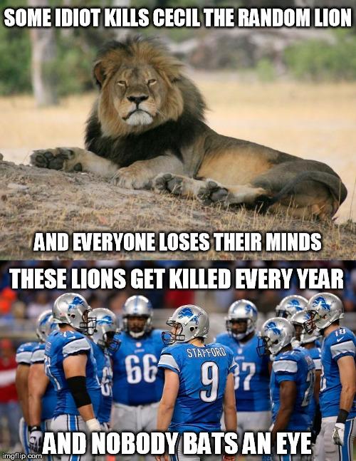 Funny Detroit Lions Memes