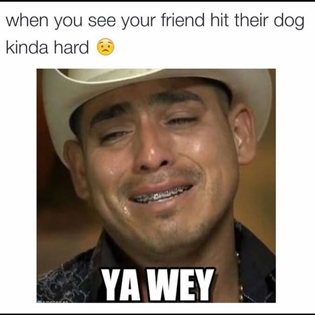 Spanish Funny Memes