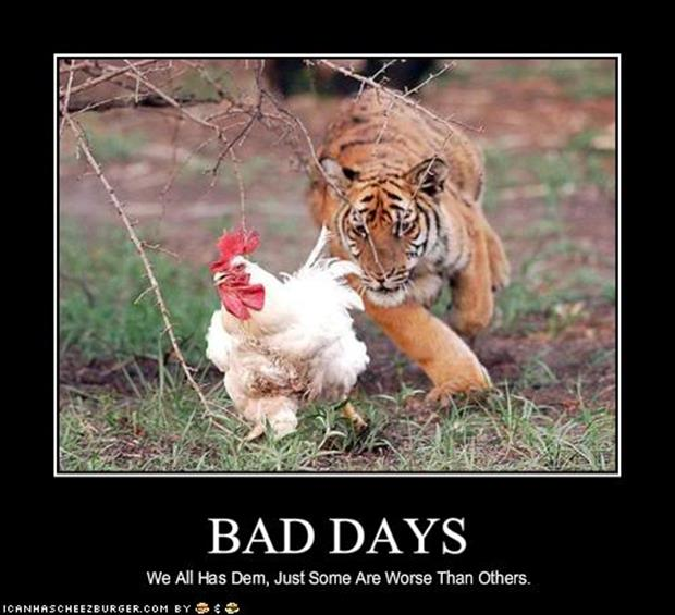 Funny Sayings About Having A Bad Day Archidev