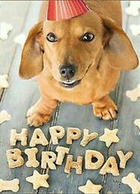 Funny Dachshund Birthday Cards by shopdoggifts |Weiner Dog Birthday Memes