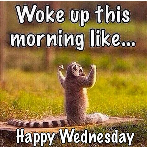 Wednesday motivation Memes