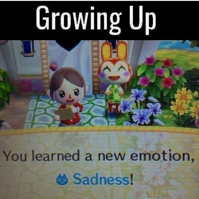 Animal Crossing New Leaf Memes