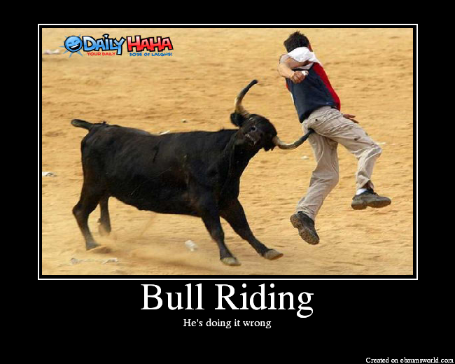 Bull riding Memes