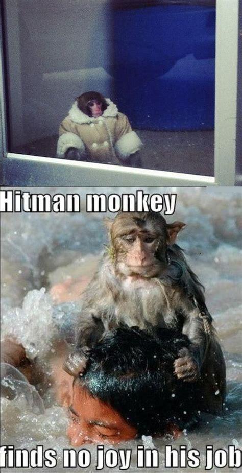 Ikea Monkey Memes