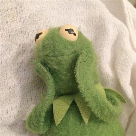 Kermit Plush Memes