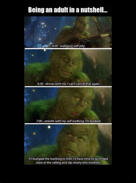 Image result for grinch pity meme