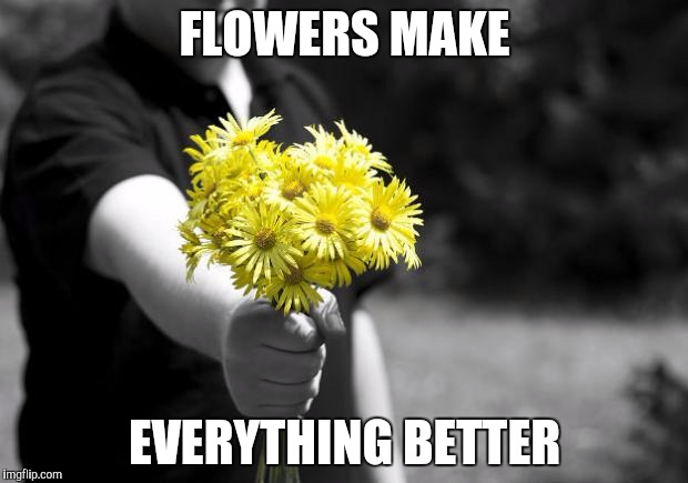 Florist Memes