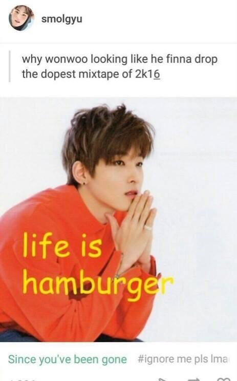Seventeen Memes