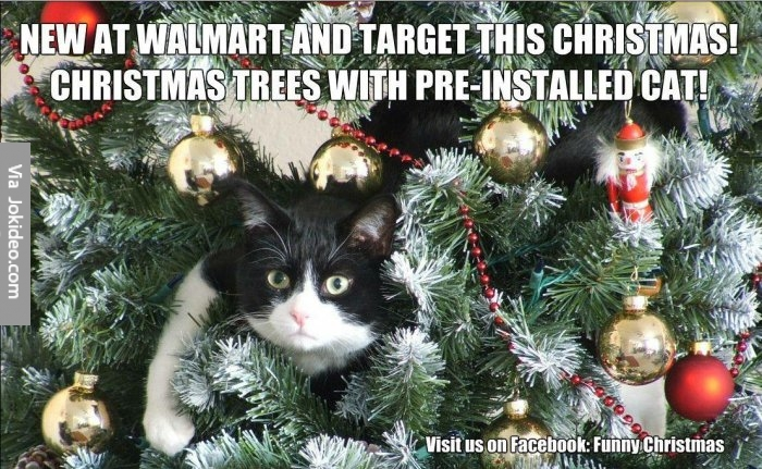 Dog Christmas Tree Meme.Christmas Tree Memes