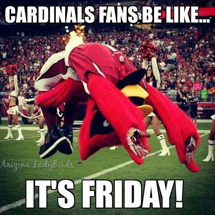 Understand Arizona cardinals suck