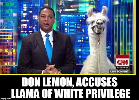 Don lemon Memes