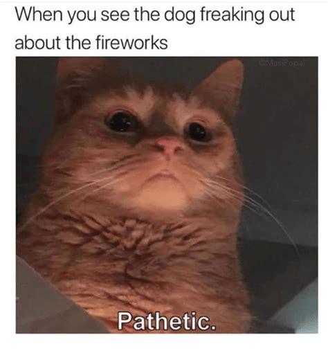 Dog Fireworks Memes