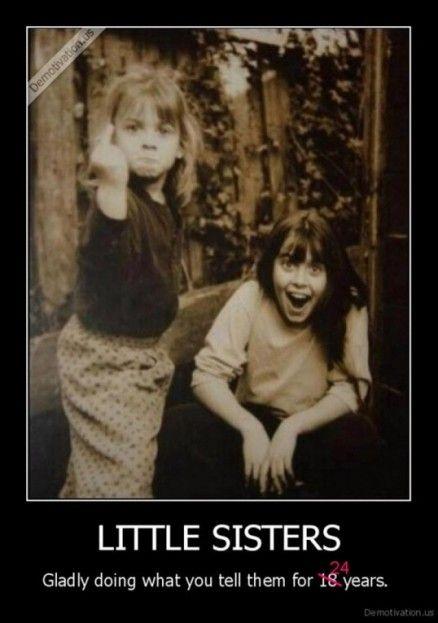 Big Brother Little Sister Memes