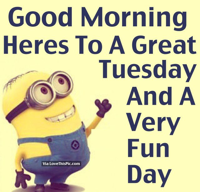 Tuesday Morning Minion Happy Quotes Funnypictures Jpg X Tuesday Morning Minion Happy Quotes Funnypictures