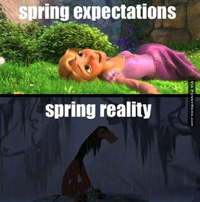 Funny Spring Memes