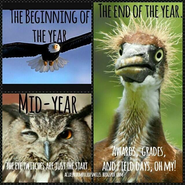 End Of Year Teacher Memes