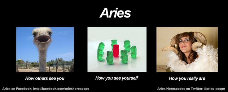 The Signs And Their Best Matches Aries Leosagittarius Taurus