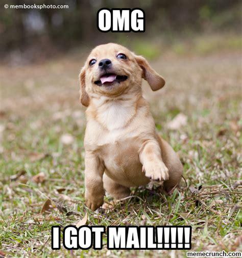Happy Puppy Memes Yay generic meme by henter_kv more memes. happy puppy memes