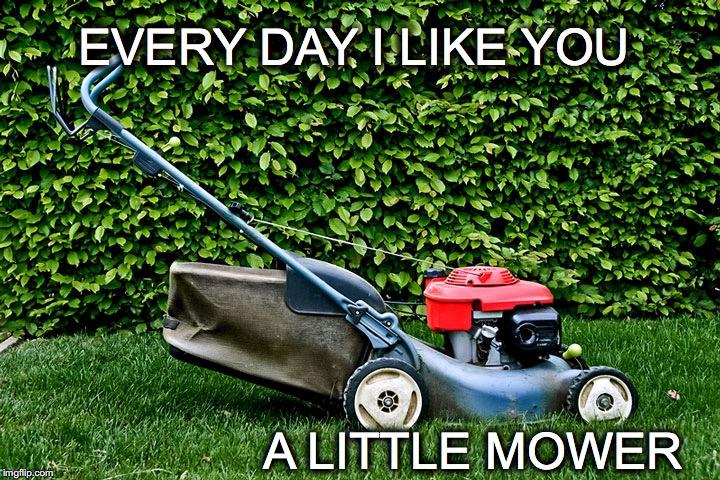 Grass Memes
