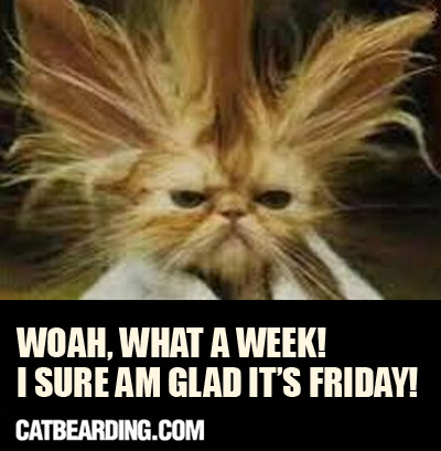 Thank God Its Friday Memes