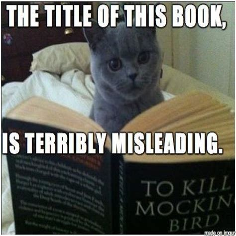 Image result for images cat reading to kill a mockingbird
