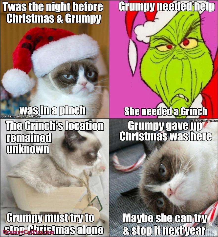 Christmas Memes Cats.Grumpy Cat Christmas Memes