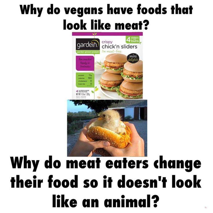 Funny Vegetarian Memes