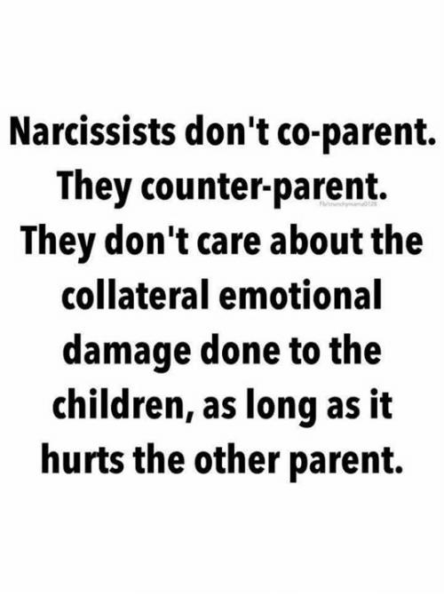 Co parenting Memes