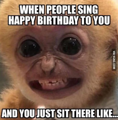 Happy Birthday Meme 9gag