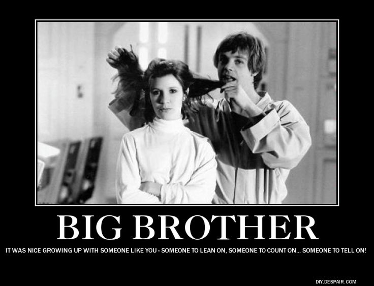 Big Brother Little Sister Memes