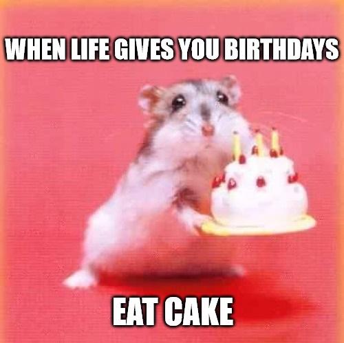 cute birthday memes Pretty birthday Memes cute birthday memes