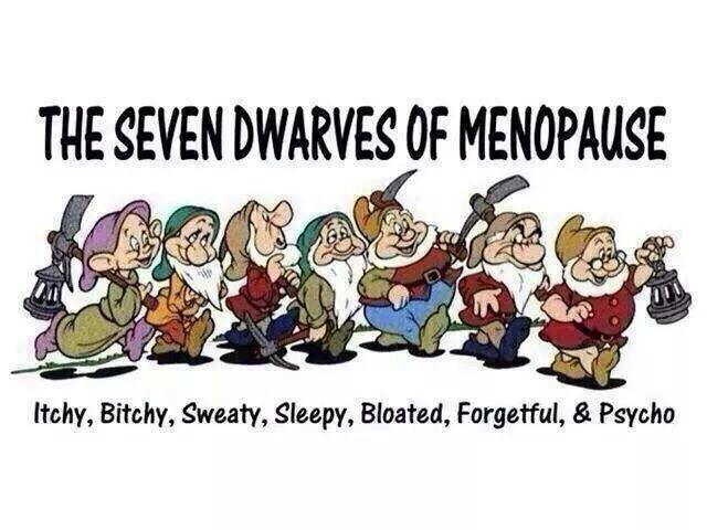 Funny Menopause Memes