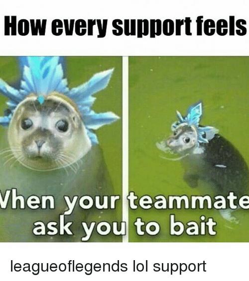 League Of Legends Support Memes