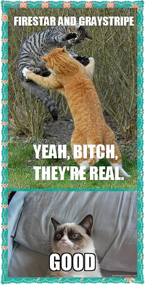 Warrior Cat Memes