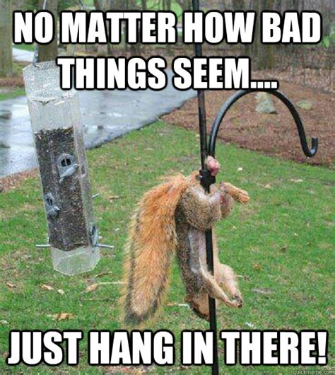 Hang In There Meme