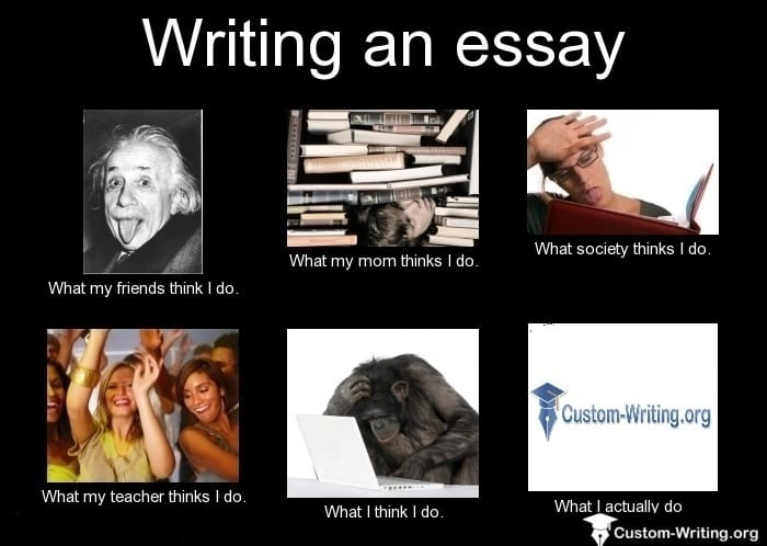 Funny Writing Memes