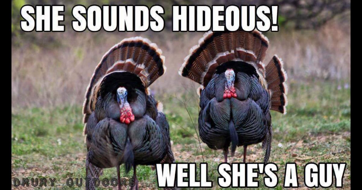 Turkey Hunting Memes