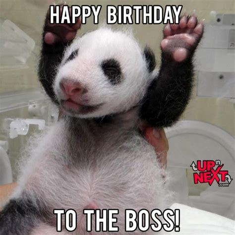 Happy Birthday Boss Lady Memes