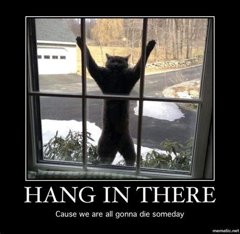 Hang In There Memes