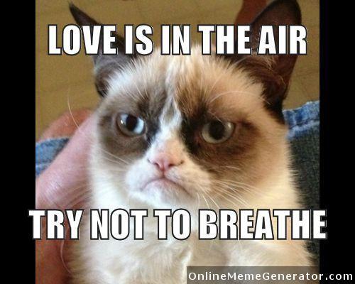 Cat Valentine Memes