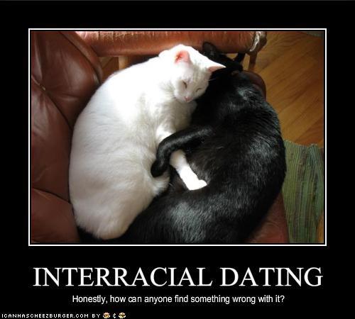 biracial dating citater