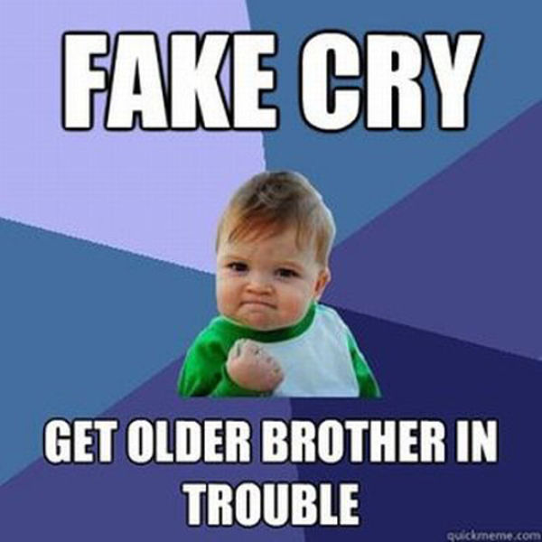 Funny Big Brother Memes