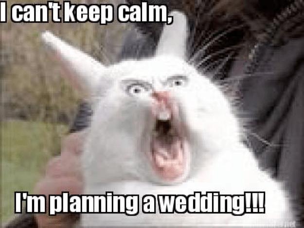 Wedding Planning Meme.Wedding Planning Memes